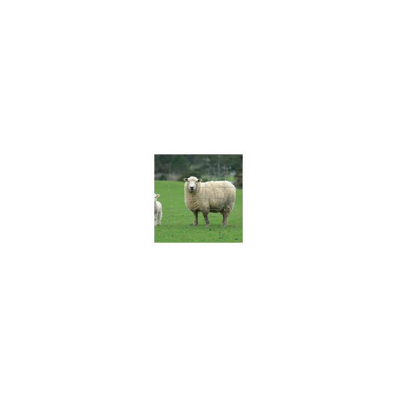Grillage à moutons galvanisé Ht 0m95