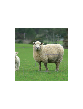 Grillage à moutons galvanisé Ht 1,47 m